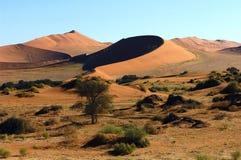 Il Namibia Fotografia Stock