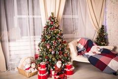 Il Natale alloggia con l'albero di Natale Immagini Stock