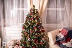 Il Natale alloggia con l'albero di Natale Immagine Stock Libera da Diritti