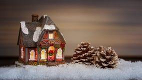 Il Natale alloggia e pigna nella neve Fotografie Stock Libere da Diritti