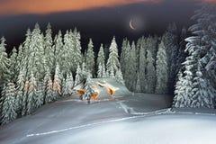 Il Natale alloggia nei Carpathians Immagine Stock