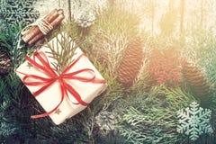 Il Natale ha decorato il regalo, i rami coniferi e la cannella Immagini Stock
