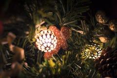 Il Natale ha decorato lo sfigure del pan di zenzero Fotografia Stock