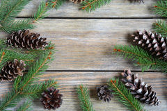 Il Natale incornicia con il ramo ed i coni del pino Immagine Stock Libera da Diritti