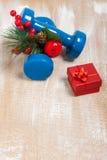 Il Natale mette in mostra la composizione con le teste di legno, contenitore di regalo rosso, berrie fotografia stock