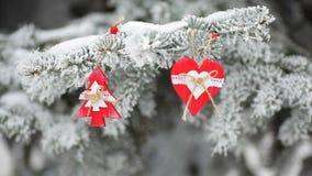 Il Natale rosso gioca sul ramo nevoso dell'abete nel parco dell'inverno stock footage