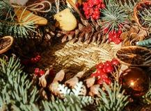 Il Natale si avvolge con i biscotti dello zenzero e l'abete rosso blu Immagini Stock Libere da Diritti