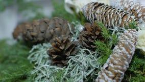 Il Natale si avvolge da abete, dal pino e dai ramoscelli attillati con i coni isolati su fondo bianco Decorazione festiva archivi video