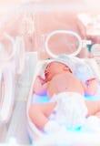 Il neonato ottiene la terapia leggera in incubatrice infantile immagine stock libera da diritti