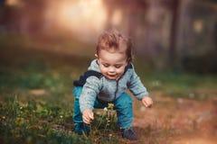 Il neonato raccoglie i fiori Fotografie Stock