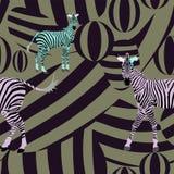 Il nero astratto di verde di rosa delle zebre del gregge di tiraggio Fotografia Stock