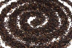 Il nero del grano Fotografia Stock