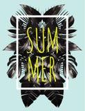 Il nero dell'estate lascia l'illustrazione dello specchio Fotografia Stock Libera da Diritti