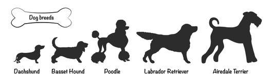 Il nero delle siluette di vettore delle razze del cane royalty illustrazione gratis