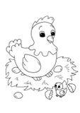 Il nero e bambini - gallina con il pulcino Immagine Stock Libera da Diritti