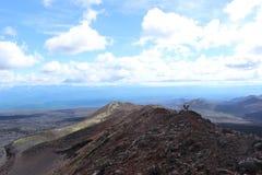 Il nero e frassino rosso americano, valle delle colline, dopo l'eruzione vulcanica Immagini Stock Libere da Diritti