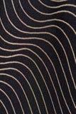 Il nero e tessuto dell'oro Fotografia Stock
