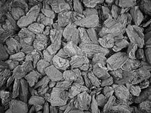 Il nero minerale del carbone Fotografia Stock