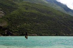 Il nero naviga il Windsurfer Fotografia Stock Libera da Diritti