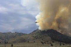 Incendio forestale della montagna immagini stock