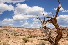 Il New Mexico variopinto Fotografie Stock