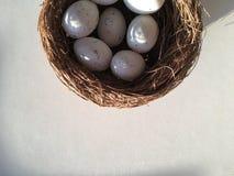 Il nido Fotografie Stock