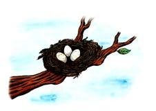 Il nido dell'uccello (Zen Pictures, 2011) Immagine Stock Libera da Diritti