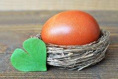 Il nido di Pasqua con l'uovo marrone ed il cuore ha modellato la foglia Fotografia Stock Libera da Diritti