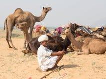 Il nomade indiano ha assistito al cammello annuale Mela di Pushkar immagine stock