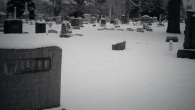 Il non morto che cammina attraverso un cimitero stock footage