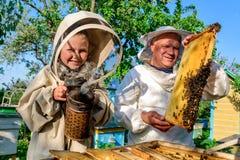 Il nonno con esperienza dell'apicoltore insegna al suo nipote che si preoccupa per le api Apicoltura Il concetto del trasferiment Immagini Stock Libere da Diritti