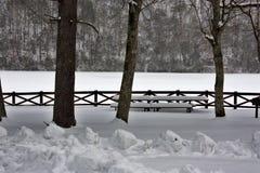 Il nostro parco di stato Fotografia Stock