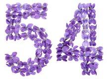 Il numero arabo 54, cinquantaquattro, dai fiori della viola, ha isolato la o Fotografia Stock