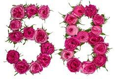 Il numero arabo 58, cinquantotto, dai fiori rossi di è aumentato, isolat Fotografie Stock Libere da Diritti