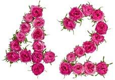 Il numero arabo 42, quarantadue, dai fiori rossi di è aumentato, isolato Fotografie Stock Libere da Diritti