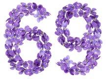 Il numero arabo 69, sessantanove, dai fiori della viola, ha isolato la o Fotografia Stock Libera da Diritti