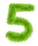 Il numero cinque 5 ha fatto di erba verde Fotografia Stock