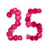 Il numero 25 dai fiori di un rosso e rosa è aumentato su un fondo bianco Fotografia Stock
