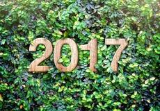 il numero di legno di struttura di 2017 nuovi anni sulle foglie verdi mura il backgroun Fotografia Stock Libera da Diritti