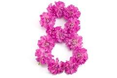 Il numero otto dai fiori Fotografia Stock Libera da Diritti