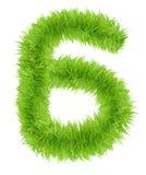 Il numero sei 6 ha fatto di erba verde Fotografia Stock