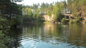 Il nuotatore nuota nel lago il nuotatore si prepara all'aperto stock footage