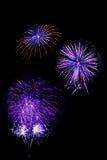 il nuovo anno dei fuochi d'artificio celebra - il bello isolante variopinto del fuoco d'artificio Immagine Stock Libera da Diritti