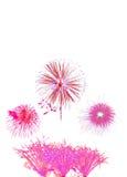 il nuovo anno dei fuochi d'artificio celebra - il bello isolante variopinto del fuoco d'artificio Fotografia Stock Libera da Diritti