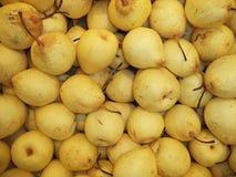 Il nuovo raccolto della pera cinese gialla matura fotografia stock