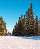 Il padiglione di gorka di Katalnaya in Oranienbaum, Russia Fotografia Stock Libera da Diritti