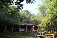 Il padiglione nella foresta di bambù Fotografia Stock