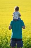 Il padre ed il figlio che considerano il seme di ravizzone sistemano il giorno di estate Fotografie Stock