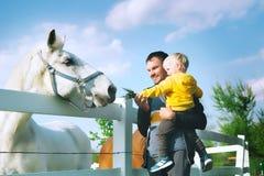 Il padre ed il figlio sono alimentazione un il cavallo alla campagna Fotografie Stock