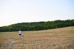 Il padre ed il suo piccolo figlio stanno camminando lungo un giacimento di grano falciato Vista posteriore Tempo di tramonto immagini stock